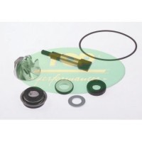 KIT DE REPARACION BOMBA DE AGUA HONDA IE 300 SCOOPY TOP